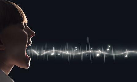 aparato fonador - mecanismo de fonación - cuerdas vocales